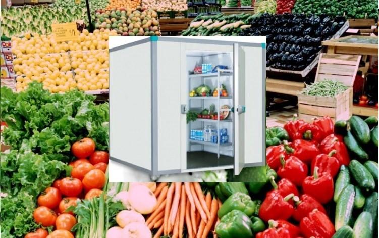 Rau củ quả màu đỏ nhiều lợi ích sức khỏe được bảo quản kho lạnh mini giá rẻ